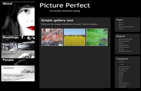 photo gallery template 25