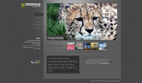 photo gallery template 32