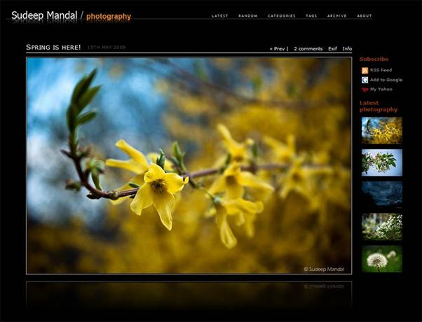 photo gallery template 42