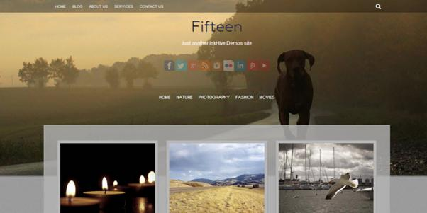 photo gallery template 47