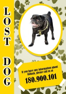 Lost Dog Flyer Template-4