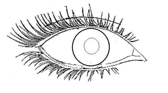 Blue Eyes Coloring Page