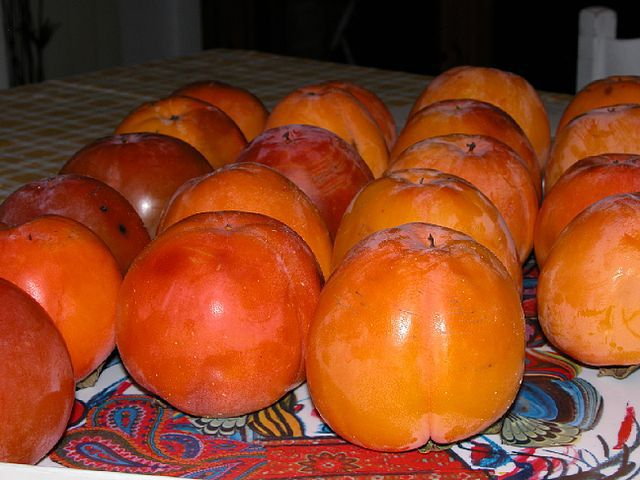Mabola - things that are orange