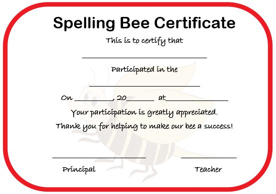 Certificate for spelling bee competition