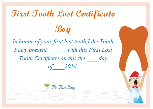 Tooth Fairy Certificate Boy