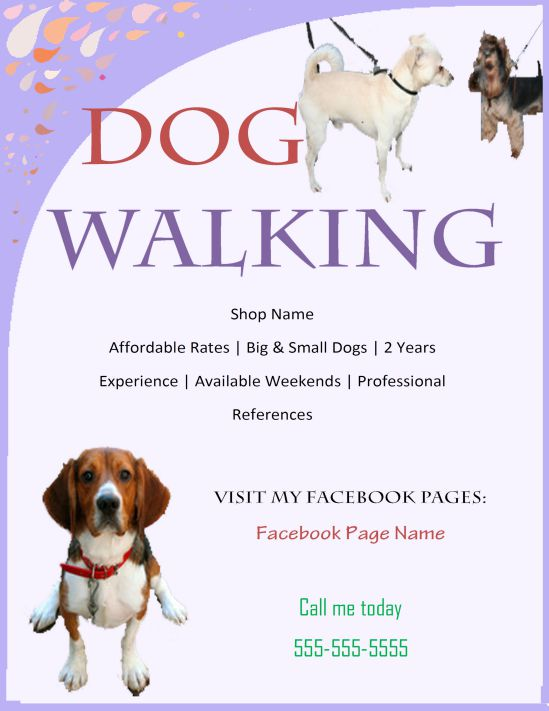 Dog walking and flyer program