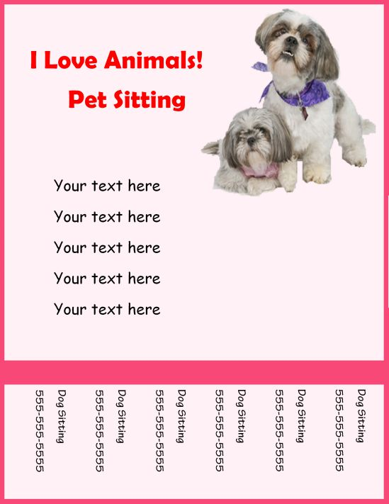 Love animals pet sitting flyer