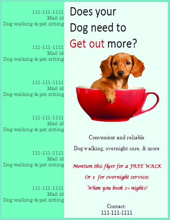 Dog walking flyer templates