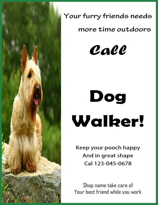 Professional dog walker flyer