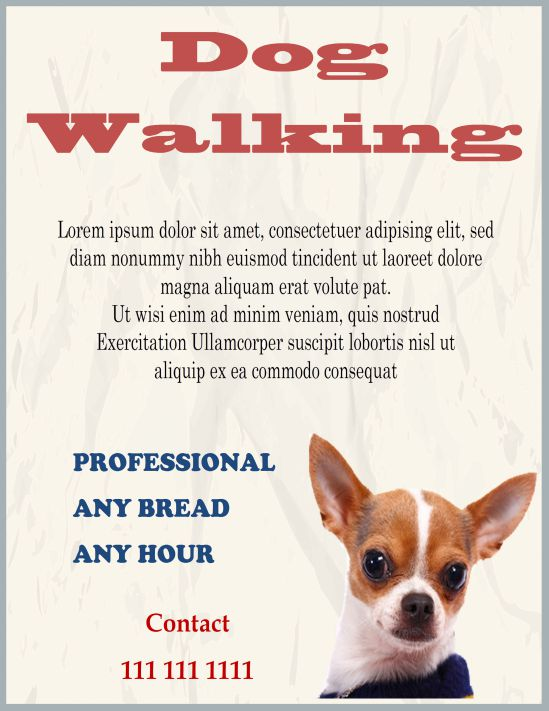 Professional dog walking flyer