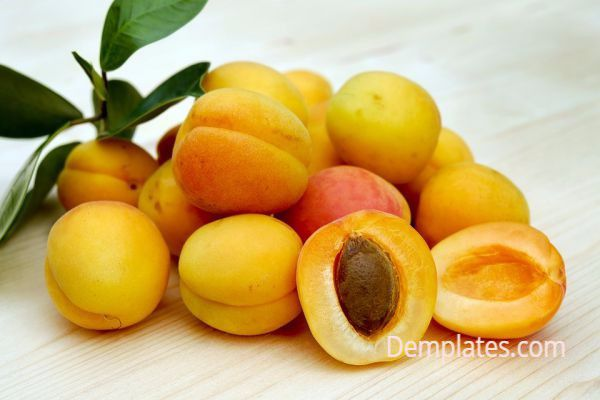 Apricots - Things That are Yellow