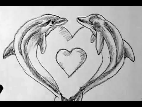 Love Dolphin Drawing