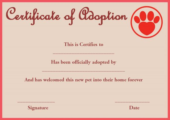 pet rock adoption certificate template