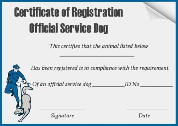 Service Dog Certificates Template Free