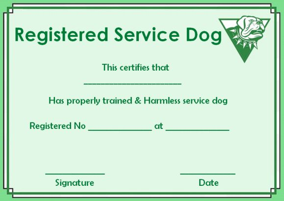 Service Dog Paper Template