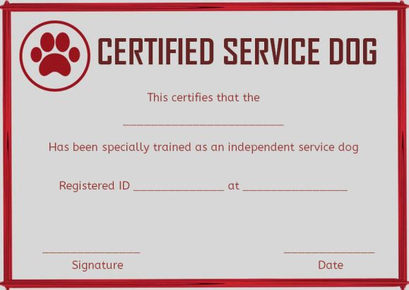 Service Dog Training Certificates Template