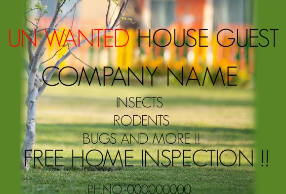 Pest Control Home Inspection